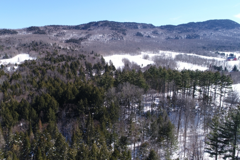 Northfield Range And Property Forestland