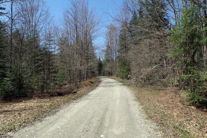 Collinsville Road - Access For The Eastern End Of The Property