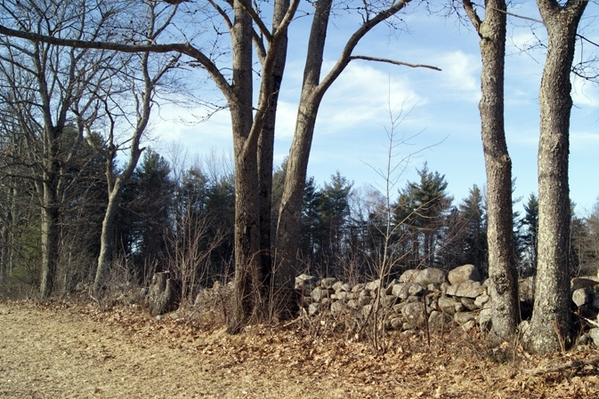 All Of The Fields On Towne Hill Are Lined By Stone Walls.