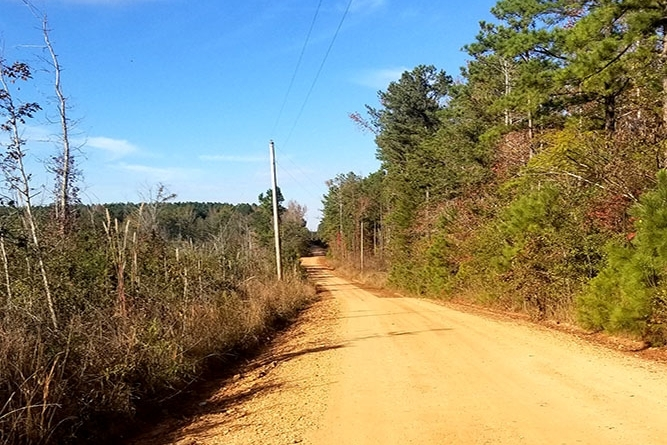 At The South Access Of The Tract Facing North Along County Road 178