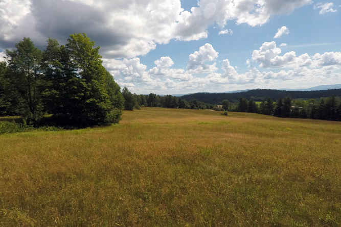 Large Open Field For A Homestead Facing South