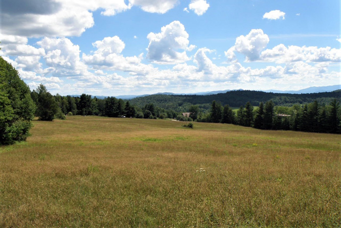 View From The Open Field Looking Southwest Toward The Green Mountains