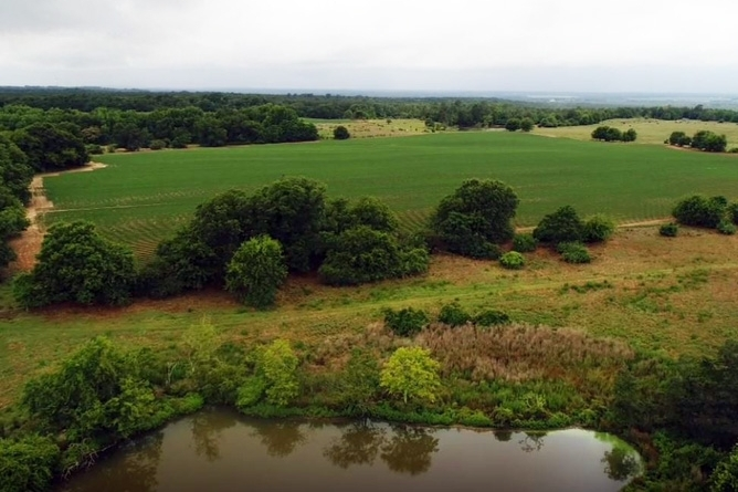 View Of Crop Land, Pasture, Water And Timber