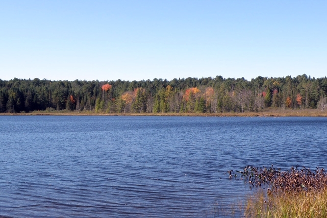 Shoreline Frontage On Opposite Side Of Pond