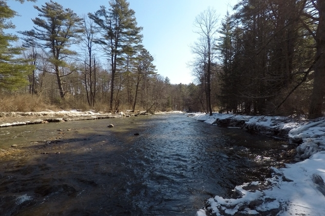 River Frontage In Winter