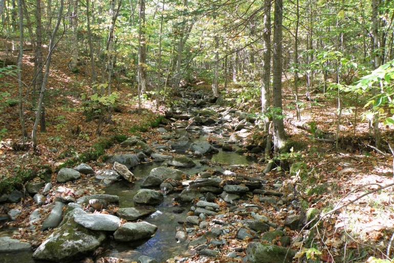 One Of Four Mountain Streams