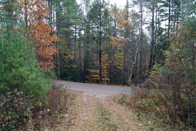 The 100'+ Gravel Driveway Provides Ample Off-Road Privacy For A Potential Home Site.