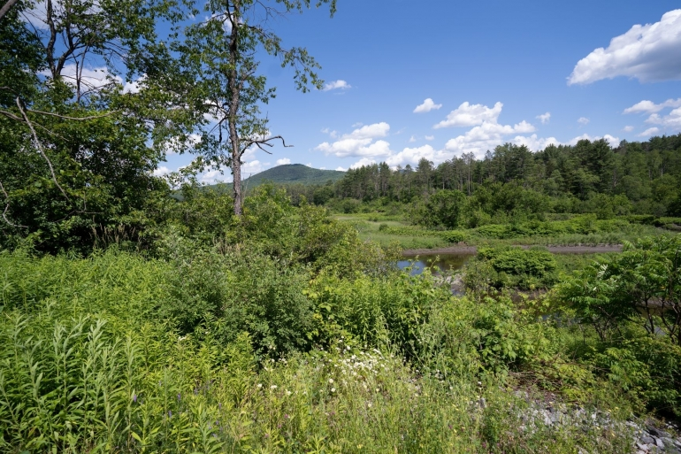 Winooski River Frontage In A 44-Acre Meadowed Property