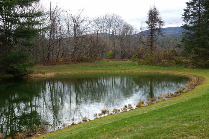 Custom-Built Swimming Pond, Fed With Clear Water From Shepard Brook