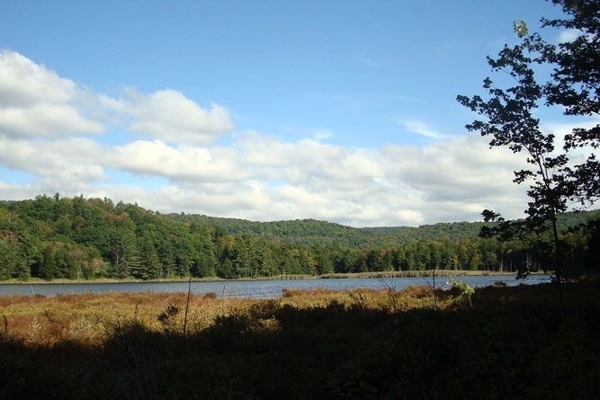 Frontage On Sugar Hollow Pond With Mountain Views To The Northeast