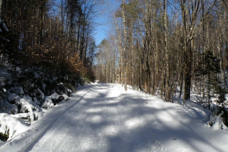 Established Roads And Trails Provide Interior Access.