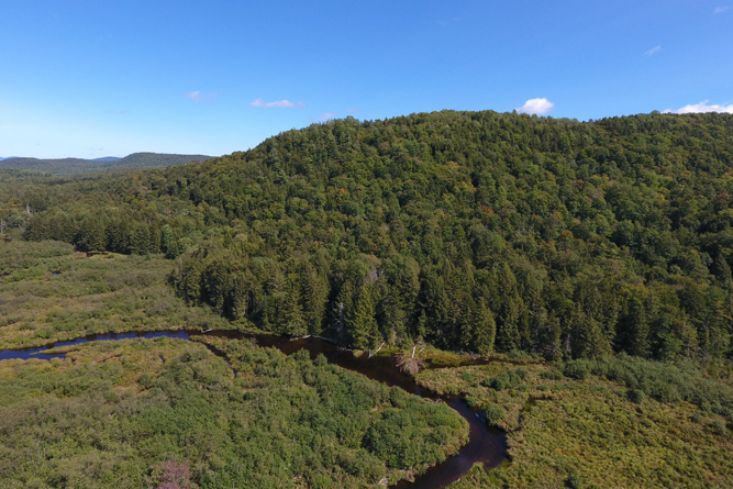 Large-Acreage Adirondack Property For Sale
