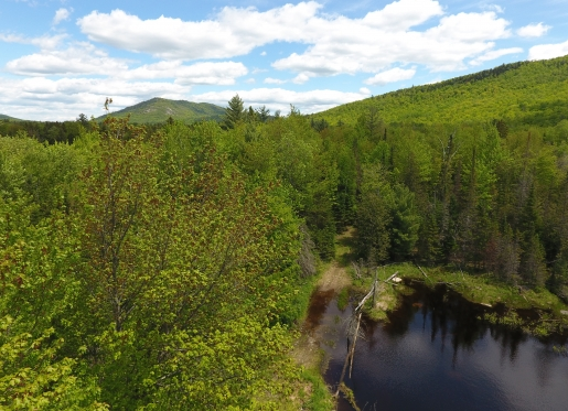 Land for Sale in Vermont and New York - Fountains Land